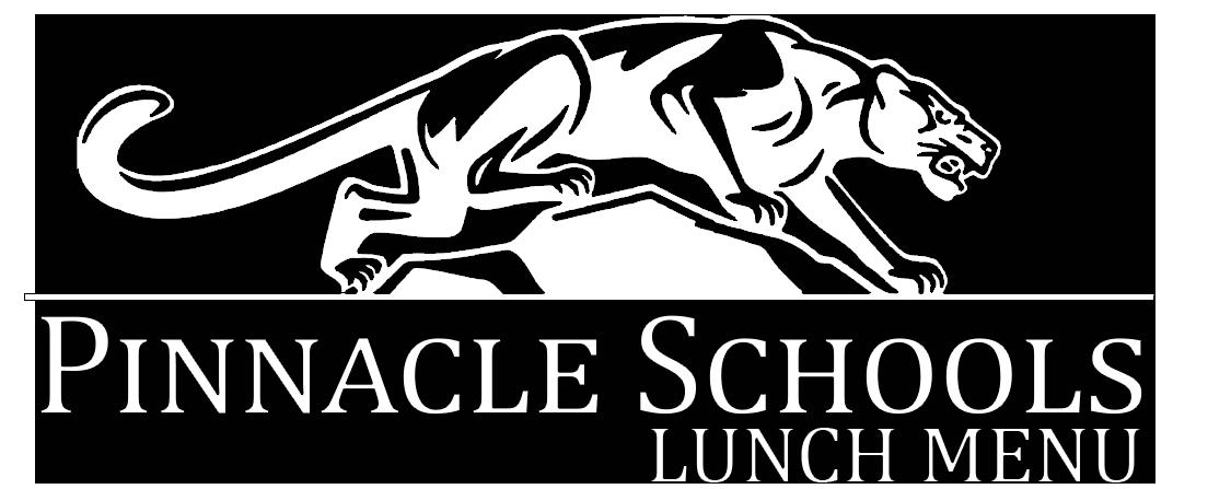Pinnacle Schools logo